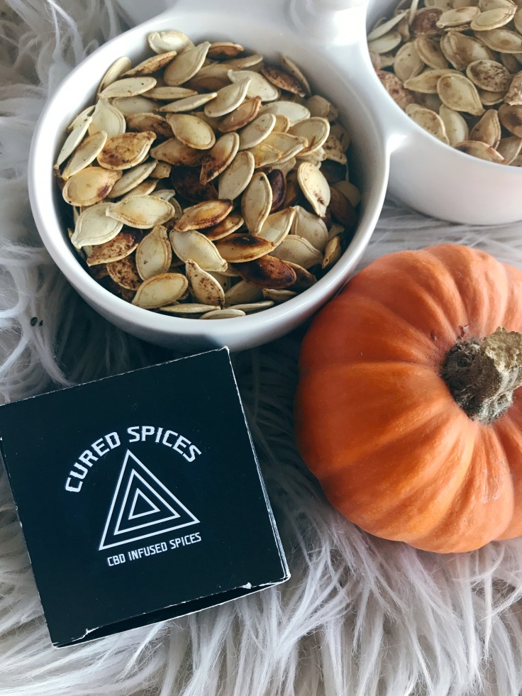 Spiced Pumpkin Seeds 9